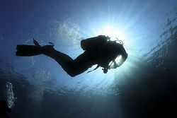 Catching Rays. Taken at the end of the dive, water was ve... by James Dally 